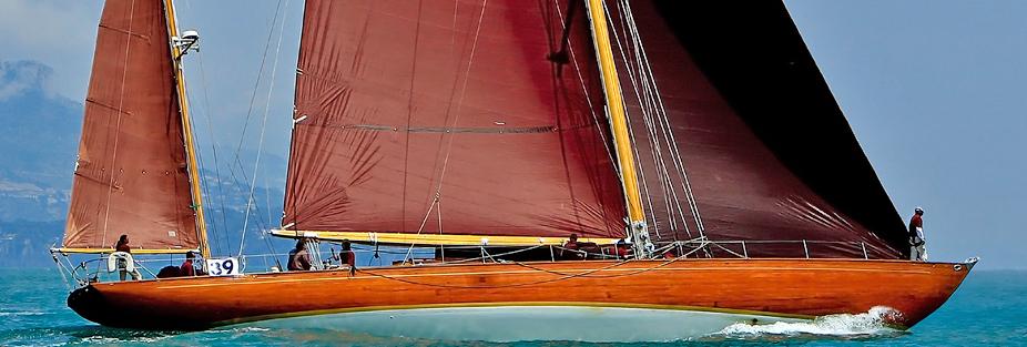 Agneta tan bark sail